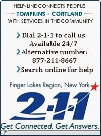 Dial 211 Link