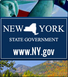 New York State Government Link