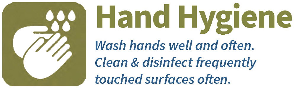 Hand Hygiene--Wash hands well and often. Clean and disinfect frequently touched surfaces often