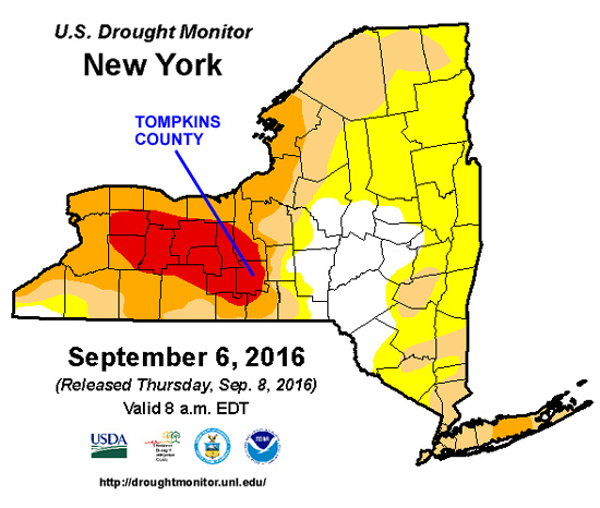 Drought map for NYS