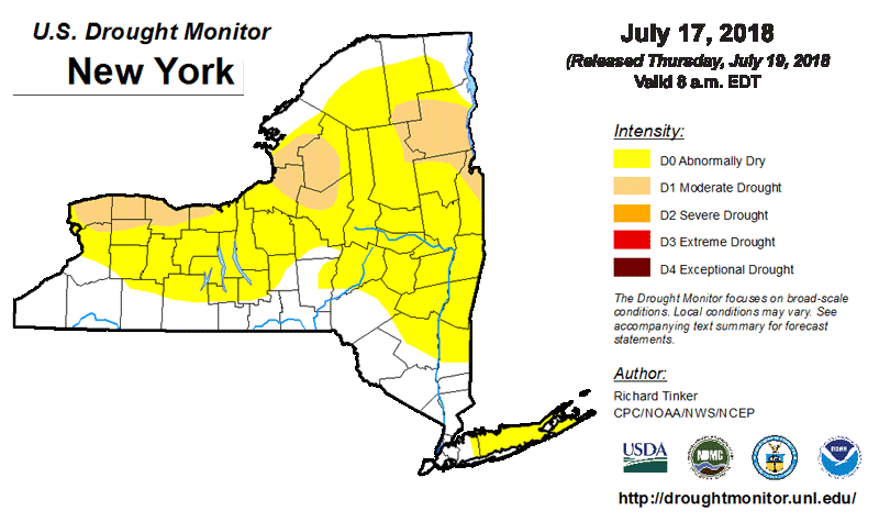 NYS Drought Map July 17 2018