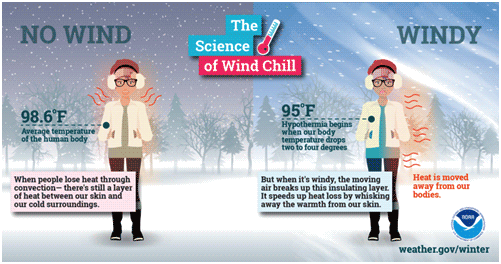 Infographic about windchil