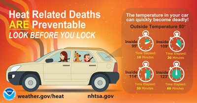 Infographic about heat safety inside cars