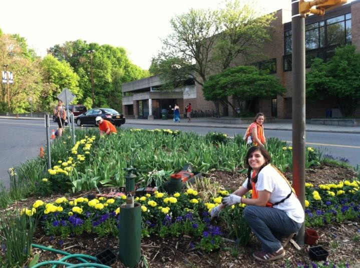 Tompkins County Beautification, Signage and Public Art Strategic Plan