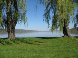 Decorative picture of lake Cayuga